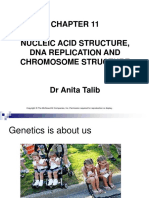 Genetics Chapter 11