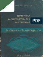 Sinergetica Paul Constantinescu