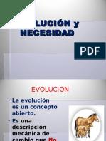 evalucion-necesidad