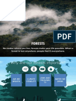 PPT Forest