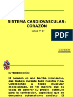 sistema cardovascular