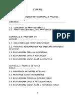 Raspunderea Civila in Cadrul Prof. Liberale