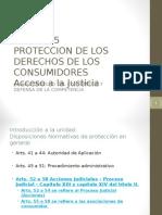 Unidad 15 Proteccion Judicial - 2016