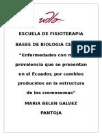 Enfermedades Que Con Mayor Prevalencia Se Presentan en El Ecuador, Por Cambios Producidos en La Estructura de Los Cromosomas