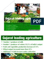 Green Gujarat Leading Agriculture