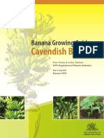 118781666-Banana-Growing-Guide-Cavendish-Bananas.pdf