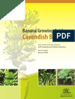 118781666-Banana-Growing-Guide-Cavendish-Bananas.pdf