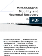 Mitochondrial Mobility and Neuronal Recovery.pptx