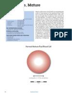 Atlas Body Fluids Erythroid 2