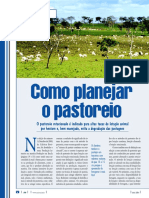 bovinos06_pastoreio