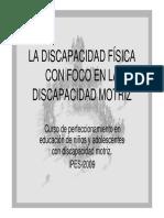 discapacidades fisicas clasificacion ortesis protesis y aparatos.pdf