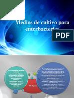 Medios de Cultivo Para Enterbacterias (1)