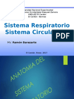 Apar Resp. y Circulatorio Anatomia UNELLEZ - Copia