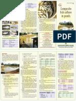 Composite fish culture in ponds