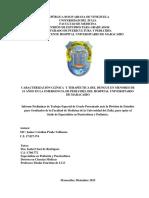 INFOME DENGUE 25.1%25-respLDO (3)