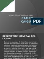 143141768-Campo