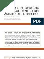Derecho Procesal Tema 1