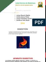 Nuevo Presentaci n de Microsoft PowerPoint.pptx Filename UTF 8''Nuevo Presentación de Microsoft PowerPoint.pptx