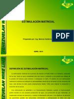 Curso de Estimulacion Matricial_ven Line 2017