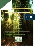 Factores Biótico y Abioticos Grupal