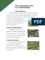 Actividades de Desarrollo Que Afectan a La Biodiversidad