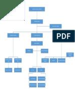 Organization chart.pdf