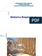 Tema #3 - Sistema Respiratorio (2016)