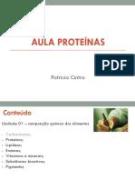 Aula Protec3adnas 2014 Introduc3a7c3a3o 1