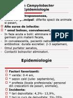 LP 5a Campy Helicob, Pseudomonas