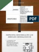 GENETICA....