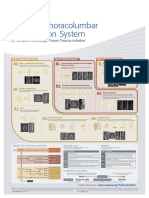 AOSpine Thoracolumbar Classification System_poster