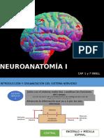 Neuroanatomía I (Sist. Nerv. - Cerebro)