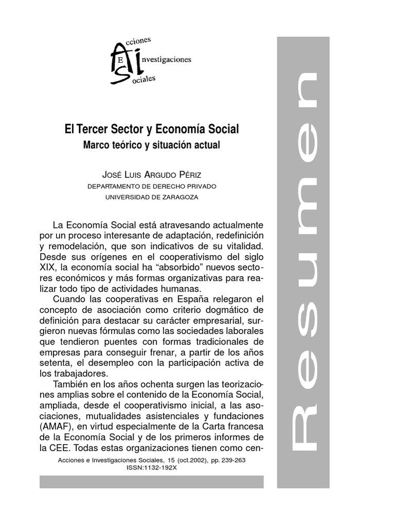 El Tercer Sector Y Economia Social- marco teórico y situción social ...