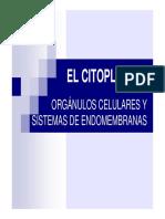 orgánulos celulares