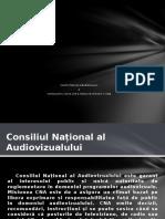 CNA Și Comisiile de Cultură