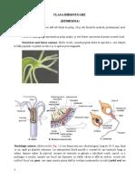 Clasa Hydrozoa (1)