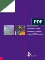 Informe - Plan de Financiacion Para Las PYME 200120132002. La Promocion de La Seguridad y La Salud en Las Pequenas y Medianas Empresas -PYME- Europeas