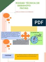 Bioquimica Radicales Libres (1)