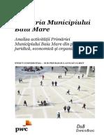 raport_audit_final.pdf