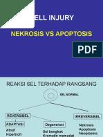 4 CELL INJURY_Nerosis vs Apoptosis