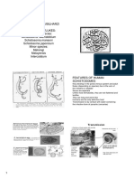 USMLE Resources for Study