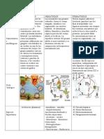 CRITERIOS DE LA MICROBIOLOGIA