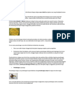 Penambangan Emas Alluvial
