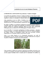 Rfi Production Du Sucre de Canne Biologique en Equateur Ingapi