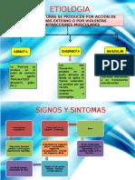 Parte Etiologia Fisiopatlogia, Signos y Sintomas de Fractura