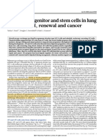 Alveolar Progenitor and Stem Cells in Lung