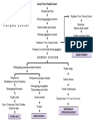 Pathway Herpes Zoster