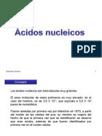 nucleicos.ppt