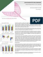 piata berii.pdf