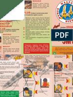 Leaflet DBD Ok